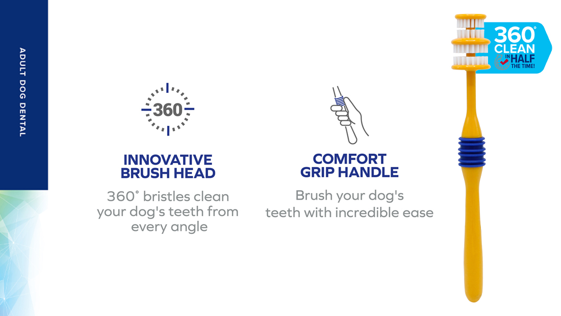 Features for Arm & Hammer 360 Toothbrush
