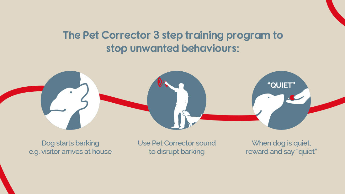 illustration showing the 3 step training program for the Pet Corrector