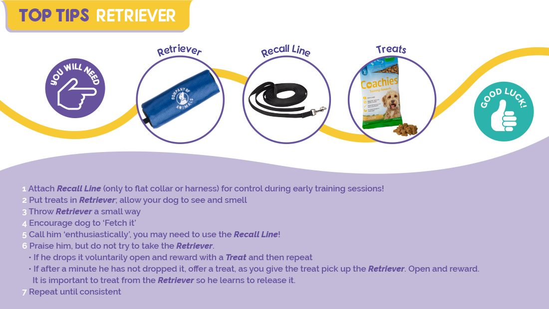 Top tips on using the Company of Animals Retriever.