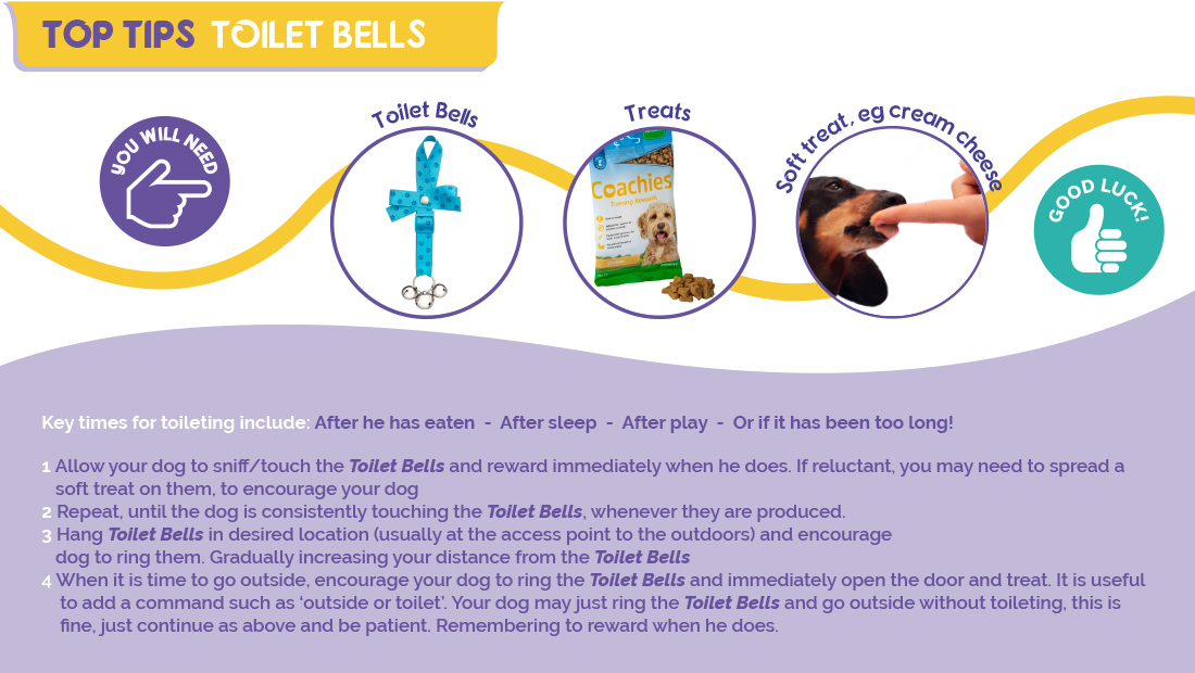 Top Tips for using Company of Animals Toilet Bells