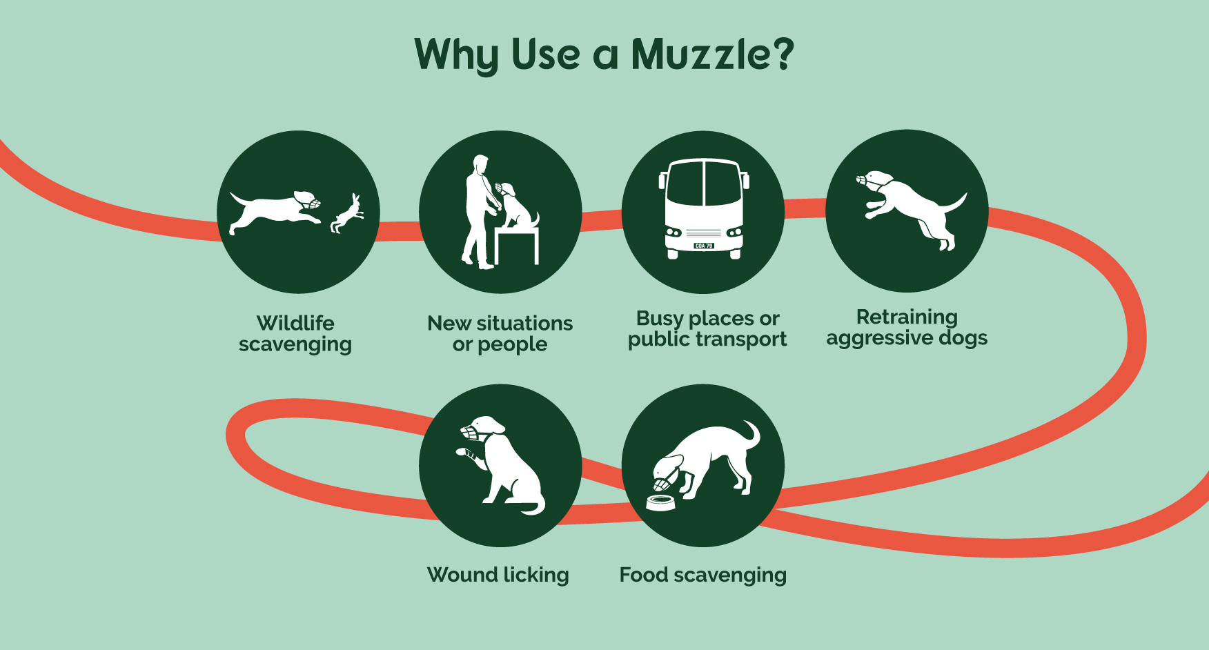 guide telling customers why they might need a muzzle