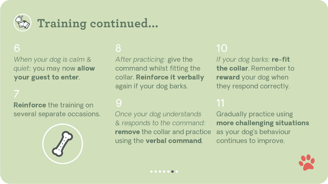 Training tips with the Pavolv No Bark Collar